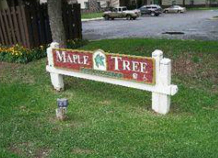 Maple Tree Apartments